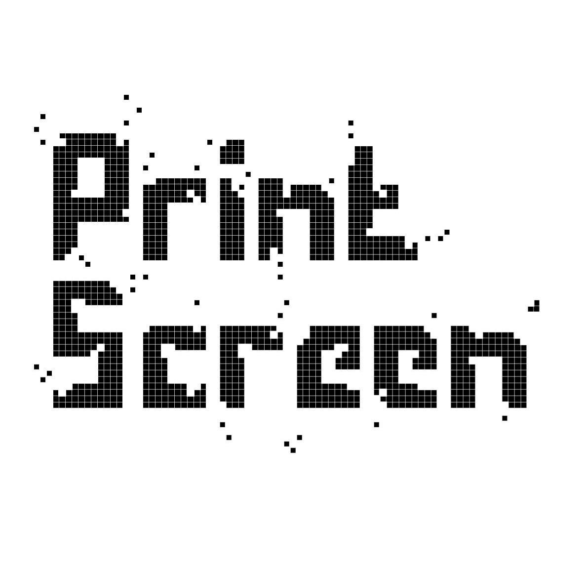 Printscreen logo
